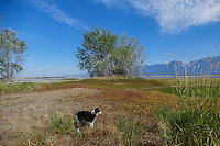 Ninepipes wildlife refuge in the Mission Valley of Montana