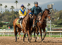 ARCADIA, CA  FEBRUARY 11: #6 Vale Dori, ridden by Mike Smith, in the post parade before the Santa Maria Stakes (Grade ll) on February 11, 2017 at Santa Anita Park in Arcadia, CA. (Photo by Casey Phillips/Eclipse Sportswire/Getty Images)