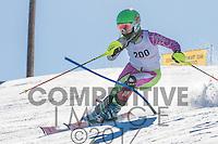 2017 Section 5 Alpine Ski Meet - AM Run