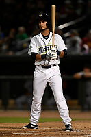 Third baseman Rigoberto Terrazas (9) of the Columbia Fireflies bats in a game against the Augusta GreenJackets on Opening Day, Thursday, April 5, 2018, at Spirit Communications Park in Columbia, South Carolina. Columbia won, 4-2. (Tom Priddy/Four Seam Images)