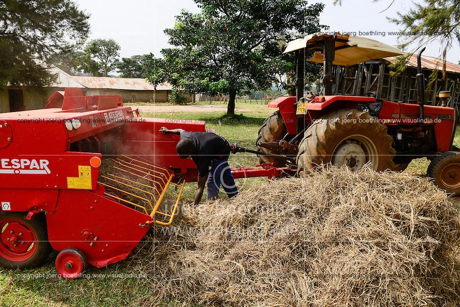 KENIA, County Kakamega, Bukura, ATDC Agricultural Technology Development Center, milk cow farm, fodder processing, hay bale machine/ Milchvieh, Futterzubereitung, Heu Ballenpresse