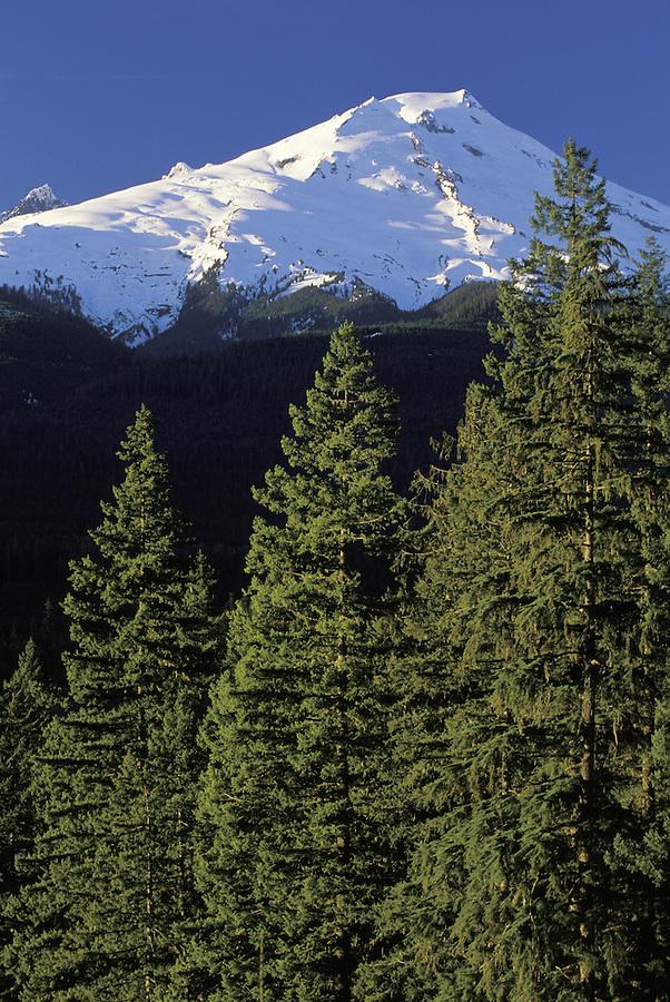 Mt Baker, Mt Baker Snoqualmie National Forest, Washington