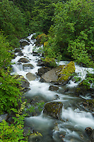 "Waterfall near Mendenhall Glacier on ""Trail of Time""-Tongass National Forest-Alaska, USA"
