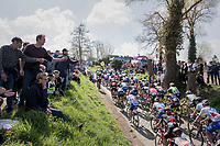 peloton over the Oude Kwaremont<br /> <br /> 101th Ronde Van Vlaanderen 2017 (1.UWT)<br /> 1day race: Antwerp &rsaquo; Oudenaarde - BEL (260km)