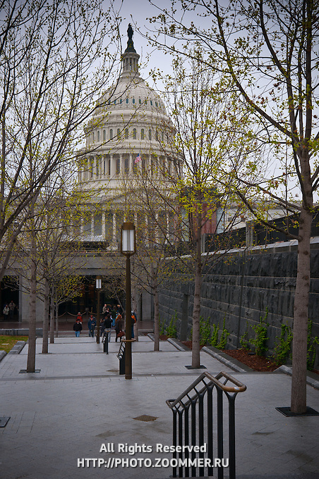 The United States Capitol and Congress House under rain