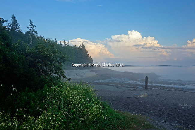 Evening view of Birch Point Beach, Owls Head, Knox County, Maine, USA.