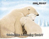 Isabella, CHRISTMAS ANIMALS, WEIHNACHTEN TIERE, NAVIDAD ANIMALES, paintings+++++,ITKE551417,#xa# ,icebear,icebears