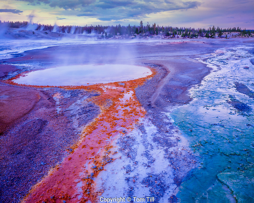 Colorful Hot Spring, Norris Geyser Basin, Yellowstone National Park, Wyoming, Evening, July