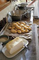 Europe/France/Auvergne/12/Aveyron: Ingrédients de la truffade et de l'aligot (tomme fraiche, ail et pomme de terre)