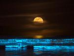 BIOLUMINESCENCE SUPER MOON SURF