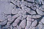 Cracked mud curls under the desert sun, Death Valley National Park, California, USA