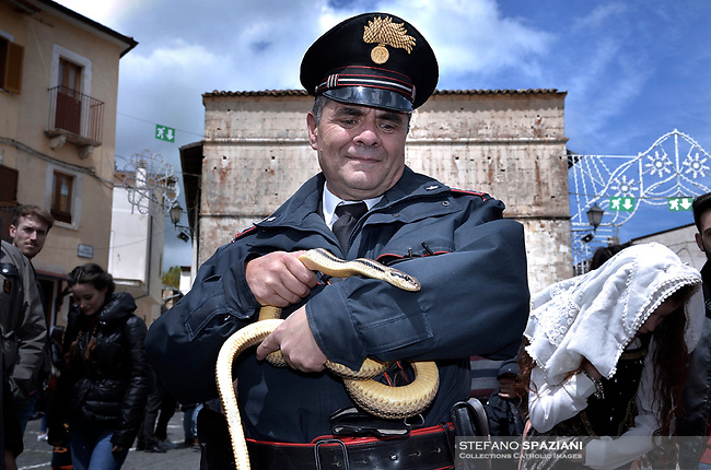 "the police officer of Cocullo with snakes in hand before the procession.The feast of snakes. Process dedicated to the Saint Dominic, in the streets of Cocullo, in the Abruzzo region, Italy on May 1, 2019.<br /> <br /> <br /> <br /> The St. Domenico's procession in Cocullo, central Italy. Every year on the first  of May, snakes are placed onto the statue of St. Domenico and then the statue is carried in a procession through the town. St. Domenico is believed to be the patron saint for people who have been bitten by snakes:<br /> <br /> Italy, Cocullo, in the Province of L'A...quila, is at 870 meters a.s.l., along the railway line connecting Sulmona to Rome. The village rises alongside Mount Luparo (1327 meters) ""The valley opening in front of the village is surrounded by bare rocks, while on the other side, to the south, snow-capped mountain crests follow one after the other...""<br /> San Domenico Abate lived in the 10th and 11th centuries AD. Born in Foligno, in the Umbria region, he started his pilgrimages, preaching and ascetic practices in Central Italy, making miracles recorded by the word-of-mouth tradition. He died on 22 January 1031 and was buried in Sora.<br /> <br /> Cocullo snake charmers are over with their snake hunting. They proceeded through the During the procession on the first in May, before the snakes are placed all over the statue of St. Dominick, they will be fed with milk kept in containers with crusca. It is the snake that, most of all other elements, expresses an ancestral myth: the unknown aspect and unpredictability of the natural environment with man's innate need to achieve the dominance on his own habitat. <br /> <br /> Snakes and wolves were the emblems of Italic peoples like the Marsians and Irpinians. Some areas in Abruzzo, especially in the Sagittario valley, were under the menace of wolves and snakes, which for the local populations represented the uncertainty and anxiety of their existence that, together with the precariousness and hardships of life, were almost unbearable. Therefore the community"