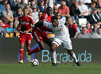 Leroy Fer of Swansea City (R) in action during the Premier League match between Swansea City and Watford at The Liberty Stadium, Swansea, Wales, UK. Saturday 23 September 2017
