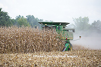 63801-07020 Farmer harvesting corn, Marion Co., IL