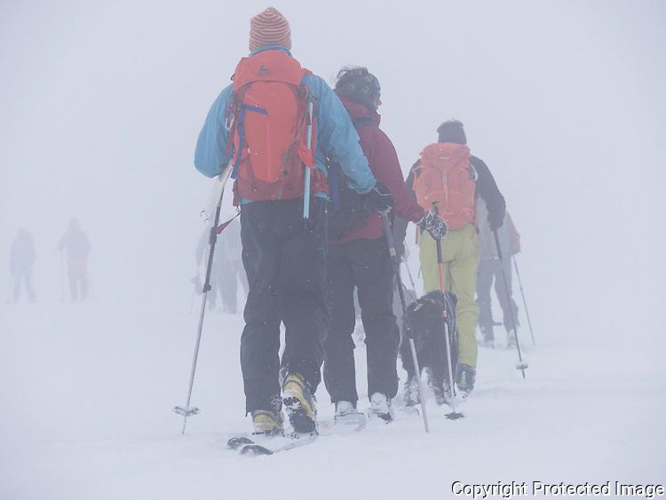 Skiløpere på vei over Øksfjordjøkelen i dårlig sikt. ---- Skiers crossing glacier Øksfjordjøkelen in poor conditions.