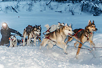 Rookie Peter Fleck runs off the Kuskokwim river and up the bank in the morning arriving at the Nikolai checkpoint during the 2018 Iditarod race on Wednesday March 07, 2018. <br /> <br /> Photo by Jeff Schultz/SchultzPhoto.com  (C) 2018  ALL RIGHTS RESERVED