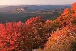Autumn at Looking Glass Rock, Blue Ridge Parkway