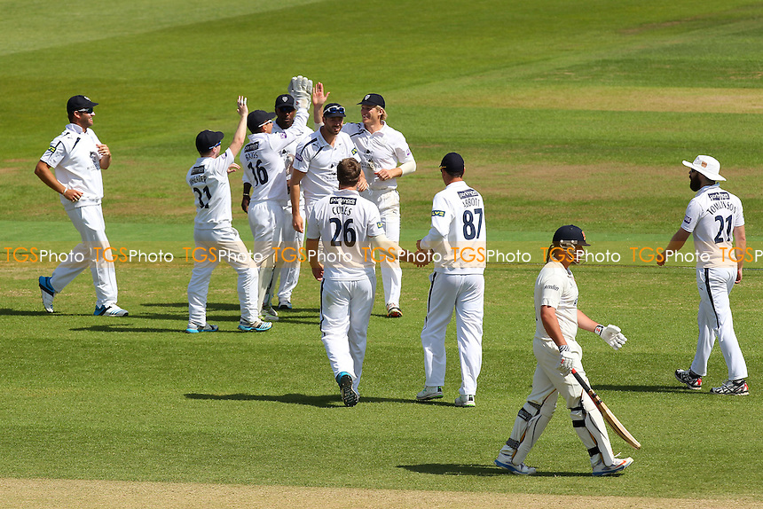 Hampshire players celebrate the wicket of Jesse Ryder - Hampshire CCC vs Essex CCC - LV County Championship Division Two Cricket at the Ageas Bowl, West End, Southampton - 17/06/14 - MANDATORY CREDIT: Gavin Ellis/TGSPHOTO - Self billing applies where appropriate - 0845 094 6026 - contact@tgsphoto.co.uk - NO UNPAID USE