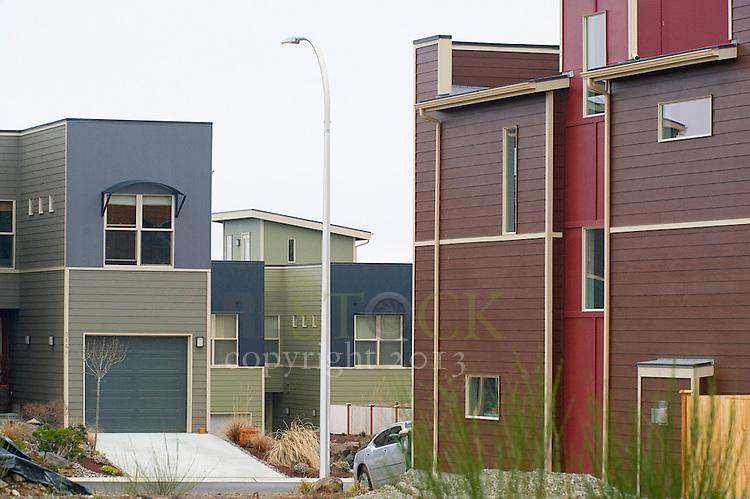 Neighborhood of Modern Homes