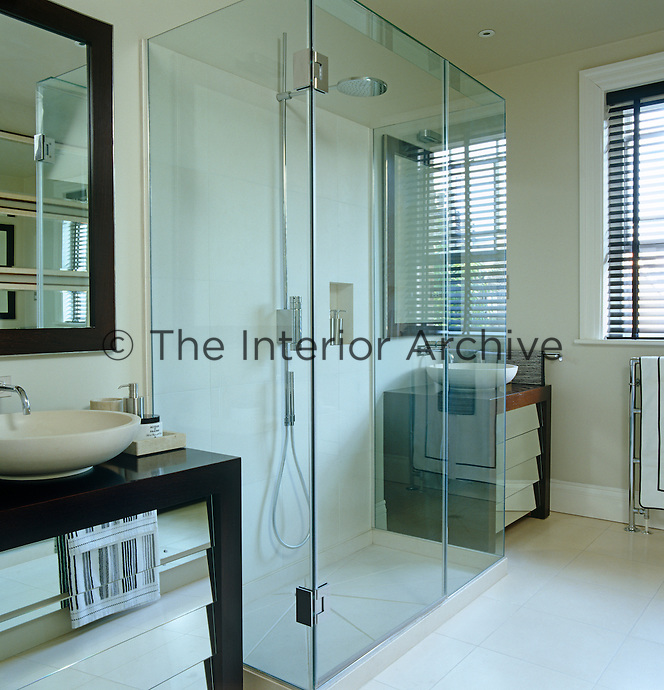 A contemporary shower in the bathroom is enclosed within a glass box