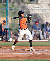 Victor Bericoto - 2019 Giants (Bill Mitchell)