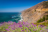 Julia Pfeiffer Burns State Park, Big Sur coast, California, USA, Pacific Ocean