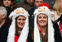 Pictured: Female welsh supporters  Saturday 14 March 2015<br />