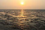 Yellow Sea mudflats at Yalu Jiang Nature Reserve. China. April.