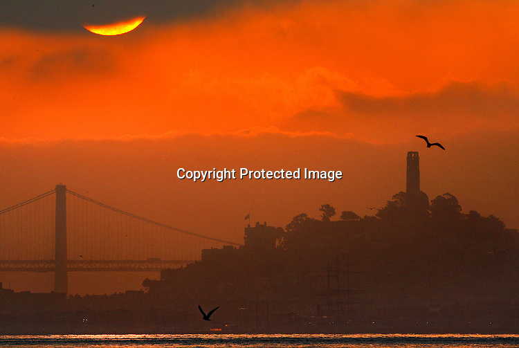 The sunrise finally broke through dense morning cloud cover over the Bay Bridge lighting up Coit Tower and southern tower of the Bay Bridge.  The early morning photograph was taken at Fort Baker fishing pier under the Golden Gate at surise 7:30am this morning shot with a Canon EOS-1D Mark II N, 500mm lens, ISO: 640, my aperture was f/16,  shutter speed: 1/500 of a second, the camera was programed for shutter priority.