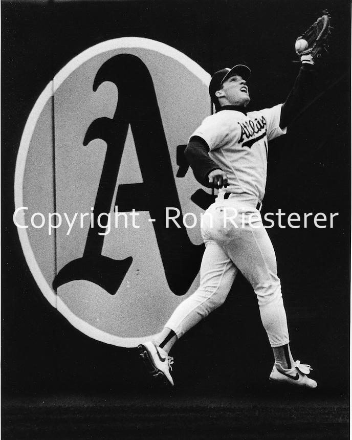 Oakland Athletics Lance Blankenship runs down fly ball.<br />(photo 1990/Ron Riesterer)