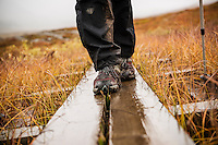 Detail of hiking boots walking on wooden planks in rain along Kungsleden trail, Lappland, Sweden