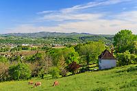 France, Correze, Dordogne valley, Astaillac, landscape seen from the belvedere of the village // France, Corrèze (19), vallée de la Dordogne, Astaillac, paysage vu depuis le belvédère du village