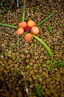 Jeceaba_MG, Brasil...Detalhe de lentilhas...Lentis detail...Foto: BRUNO MAGALHAES / NITRO
