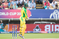 A patched up Alex Carey (Australia) lets a short delivery pass during Australia vs England, ICC World Cup Semi-Final Cricket at Edgbaston Stadium on 11th July 2019