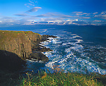 County Kerry, Ireland   <br /> Dingle Bay and rolling surf under the cliffs of Parkemore Point, on the Dingle Peninsula