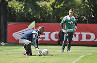 SÃO PAULO.SP. 03.04.2015 - PALMEIRAS TREINO - Aranha e Fernando Prass do Palmeiras durante o treino na Academia de Futebol zona oeste na nesta sexta feira 03.  ( Foto: Bruno Ulivieri / Brazil Photo Press )