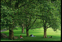 People find the shade of their own tree to sit under in Frederick Law Olmsted's Central Park. Olmsted believed in the restorative effects of natural scenery to counteract what he saw as the debilitating effects of the modern city.