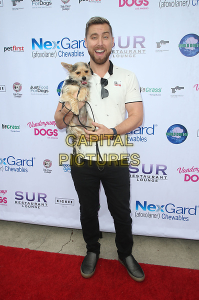 WEST HOLLYWOOD, CA - MAY 19: Lance Bass, at The Vanderpump Dog Foundation's 3rd Annual World Dog Day Event Presented by NexGard &amp; SUR Restaurant on May 19, 2018 at West Hollywood Park in West Hollywood, California on May 19, 2018. <br /> CAP/MPI/FS<br /> &copy;FS/MPI/Capital Pictures