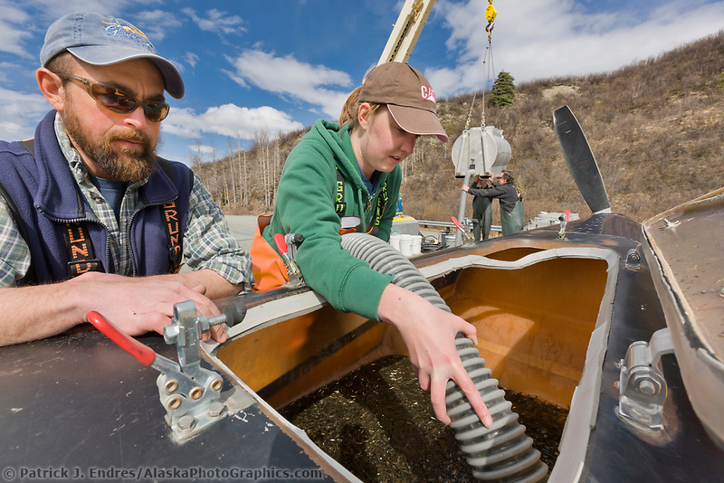 Assistant Gulkana hatchery manager Denny Patdnode  and Renee Pszyk load sockeye salmon into the 500 gallon tank of a Thrush agricultural crop-duster aircraft which releases the fry aerially into  Crosswinds lake.