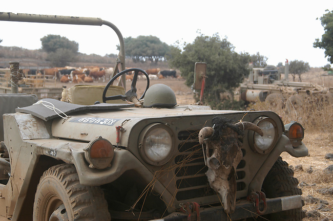 IDF Jeep on the field. Golan Heights. 2nd Lebanon War. Israel, August 2006.