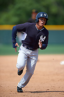 New York Yankees Carlos Vidal (81) during a minor league Spring Training game against the Pittsburgh Pirates on March 26, 2016 at Pirate City in Bradenton, Florida.  (Mike Janes/Four Seam Images)