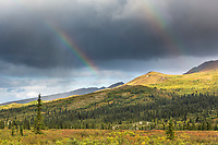 A double rainbow arcs over the tundra and taiga of Denali National Park, Alaska.