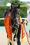 Ares Barows, AUGUST 19, 2018 - Horse Racing : Ares Barows after winning the TV Nishinippon Corp.Sho Kitakyushu Kinen at Kokura Racecourse in Fukuoka, Japan. (Photo by Eiichi Yamane/AFLO)