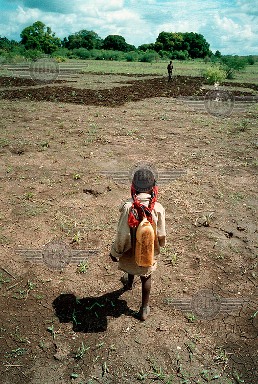 A young Bantu boy makes his way over the parched soil. A third successive year of drought in Somalia will mean that the harvest again wil be small.....