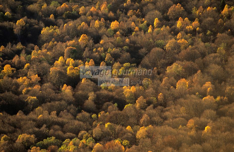 Europe/France/Auvergne/63/Puy-de-Dôme/Parc Naturel Régional des Volcans/Puy-de-Dôme: Automne dans les Monts Dômes vus depuis le Puy-de-Dôme