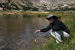 One beautiful trout caught by Apryle on a summer morning at Lawn Lake in Rocky Mountain National Park, Colorado, USA