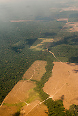 Novo Progresso, Para State, Brazil. Aerial view showing the advance of deforestation for farming and ranching, with tracks snaking through the forest and a patchwork of deforestation.