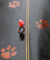 A pedestrian uses an umbrella to shield herself from an afternoon rain shower as she crosses the Avenue of Champions outside of Clemson University's Memorial Stadium on Friday. Forecasters are calling for rainy conditions to continue on Saturday but warm weather and sunny skies will take over early next week.