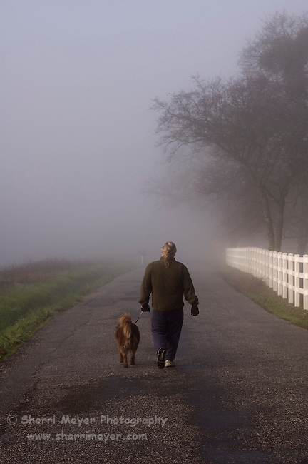 Man walking his dog down a foggy country road, Auburn California