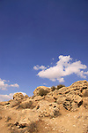 Israel, Northern Negev, rocks with petrified corrals by Nahal Ofakim